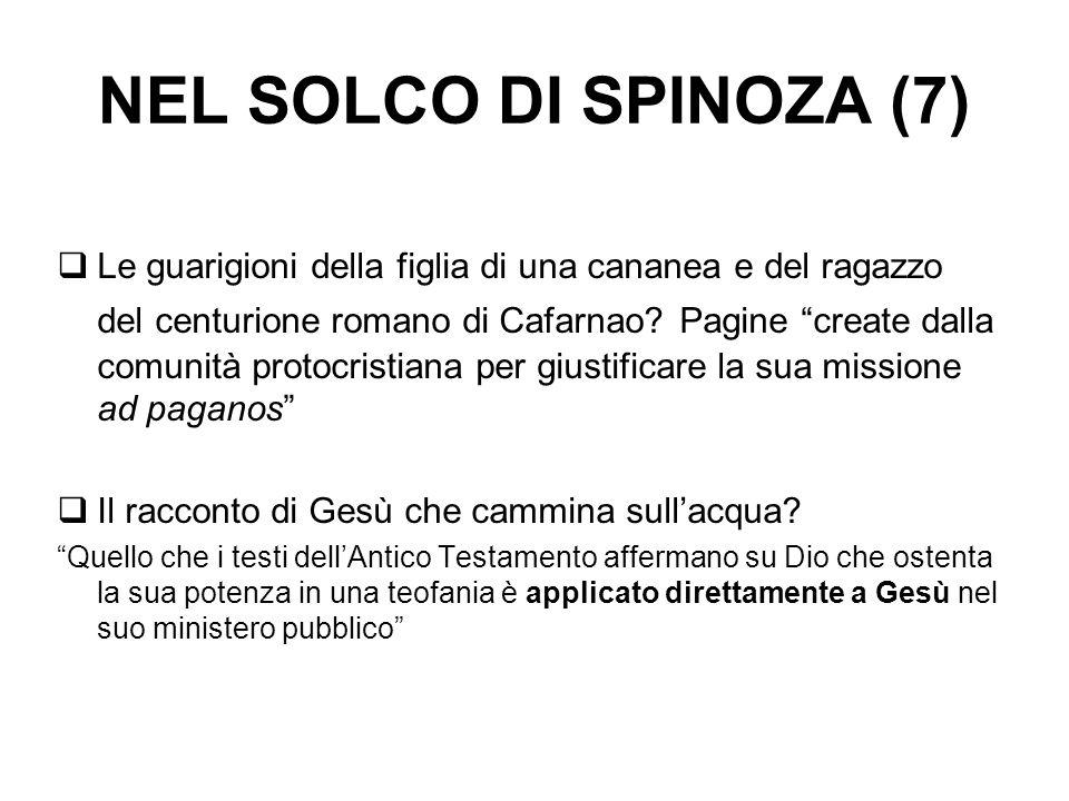 NEL SOLCO DI SPINOZA (7)