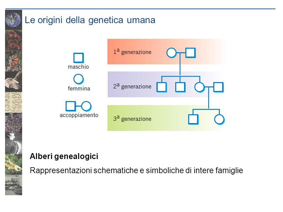 Le origini della genetica umana