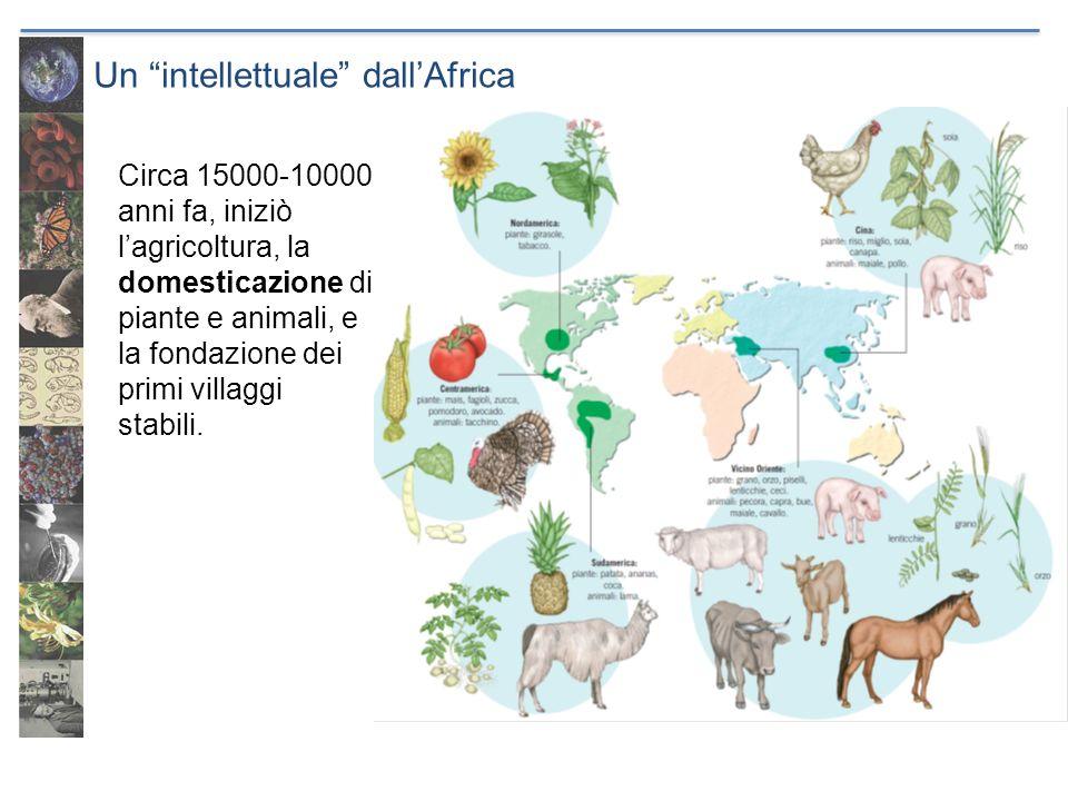Un intellettuale dall'Africa