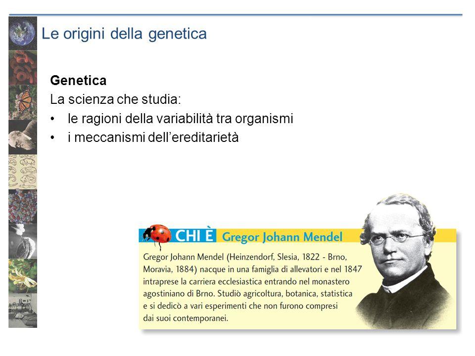 Le origini della genetica