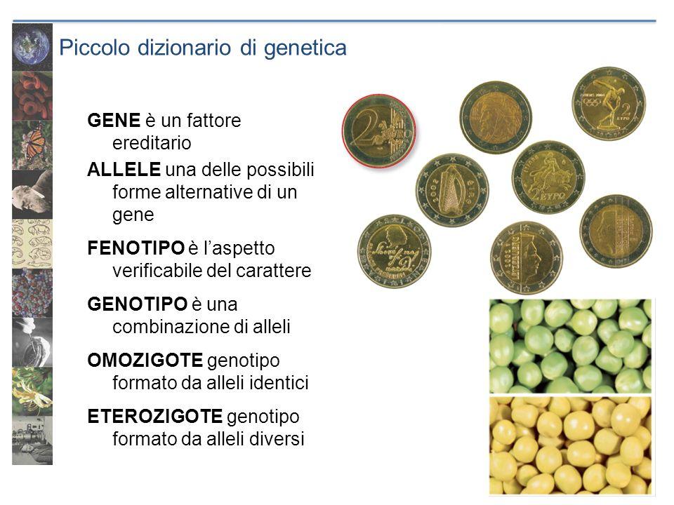 Piccolo dizionario di genetica