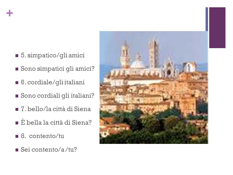 5. simpatico/gli amici Sono simpatici gli amici 6. cordiale/gli italiani. Sono cordiali gli italiani