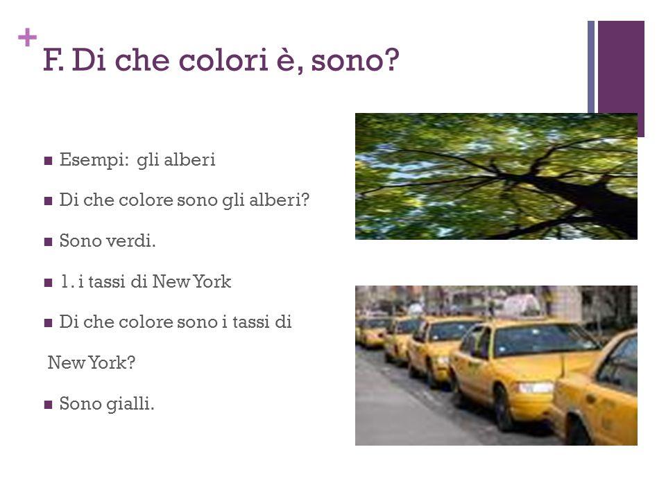 F. Di che colori è, sono Esempi: gli alberi