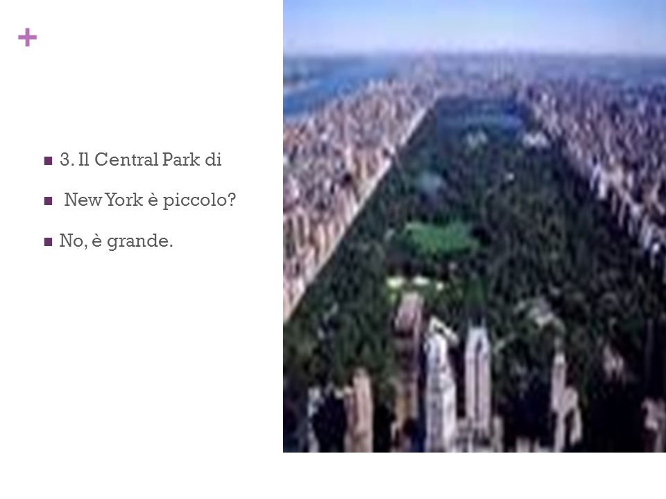 3. Il Central Park di New York è piccolo No, è grande.