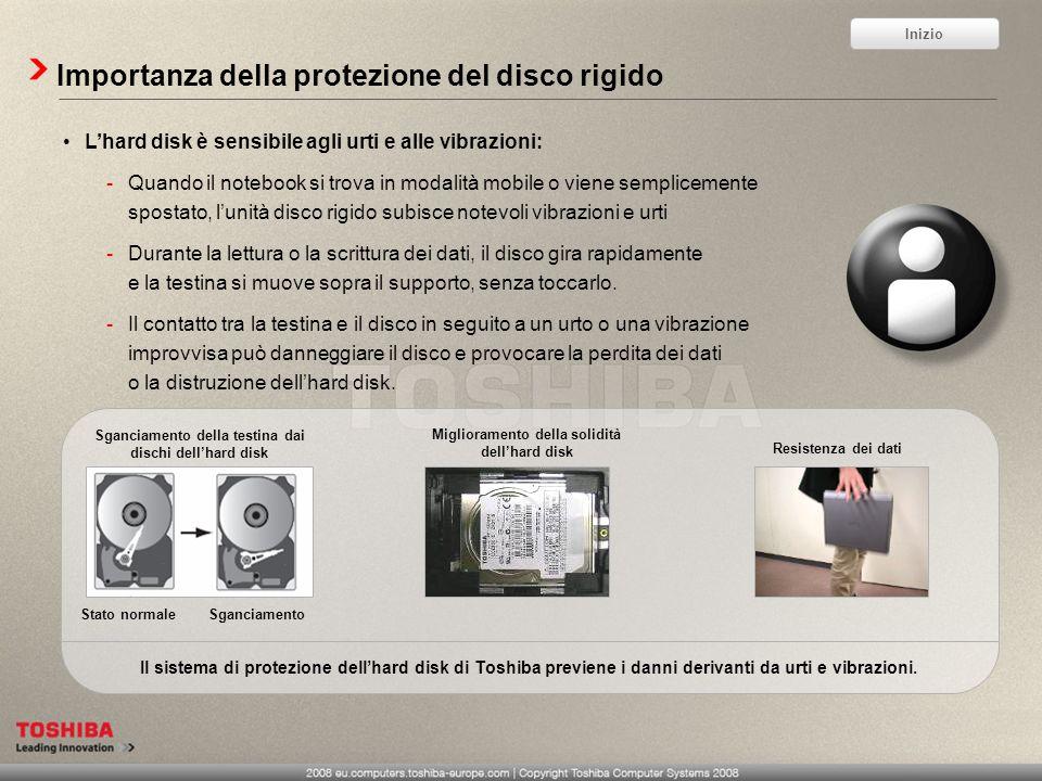 Importanza della protezione del disco rigido