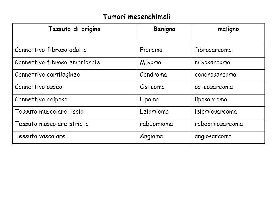 Tumori mesenchimali Tessuto di origine Benigno maligno