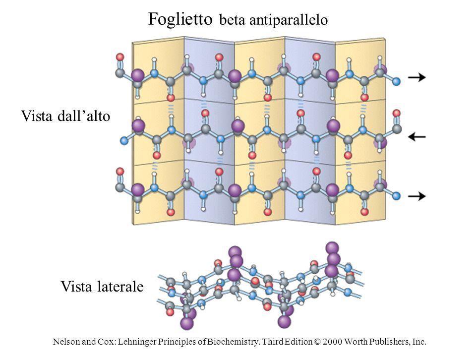 Foglietto beta antiparallelo