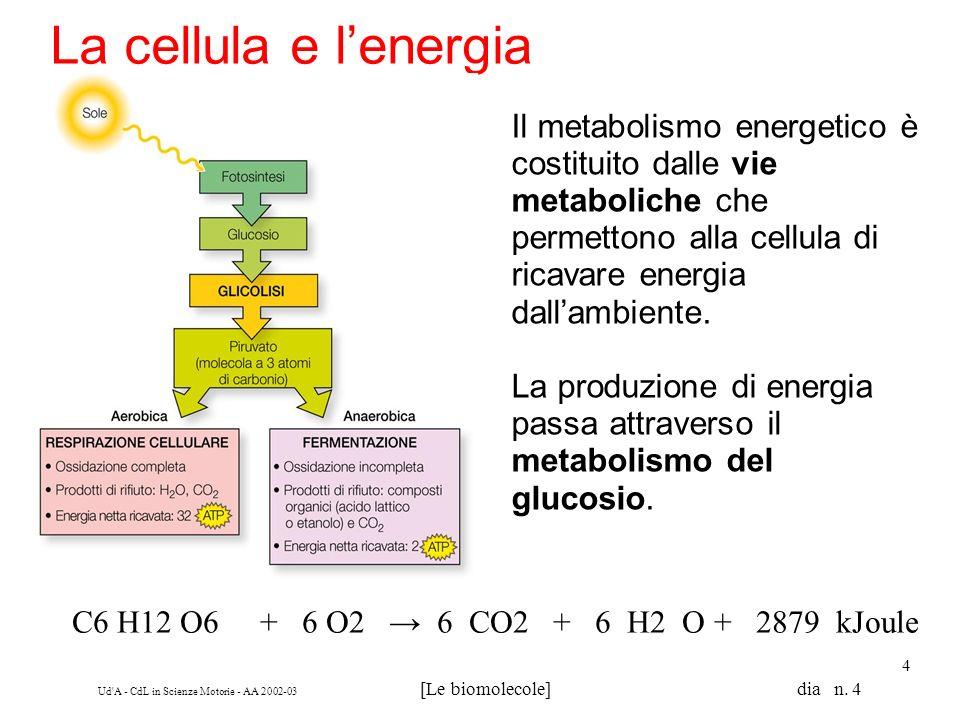 La cellula e l'energia Il metabolismo energetico è costituito dalle vie metaboliche che permettono alla cellula di ricavare energia dall'ambiente.