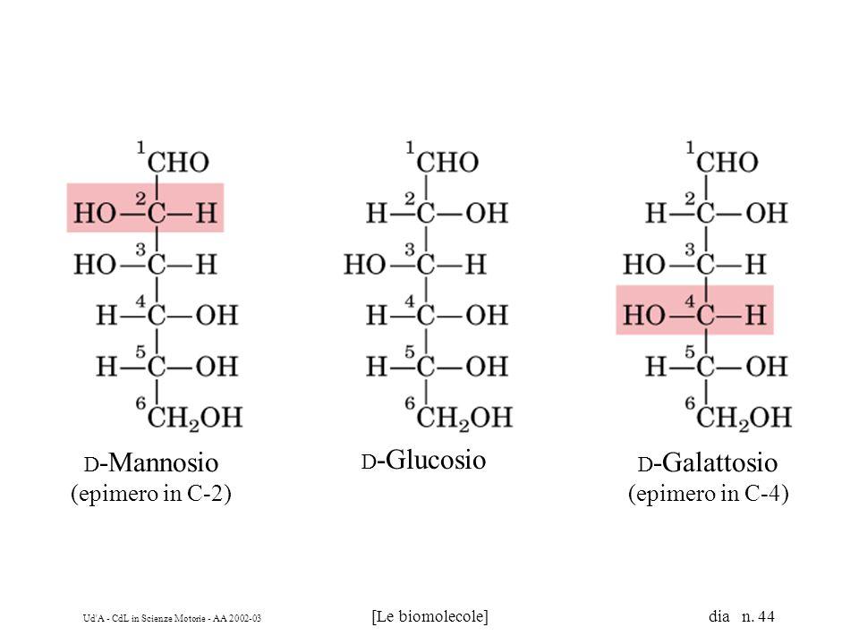 D-Mannosio (epimero in C-2) D-Glucosio D-Galattosio (epimero in C-4)
