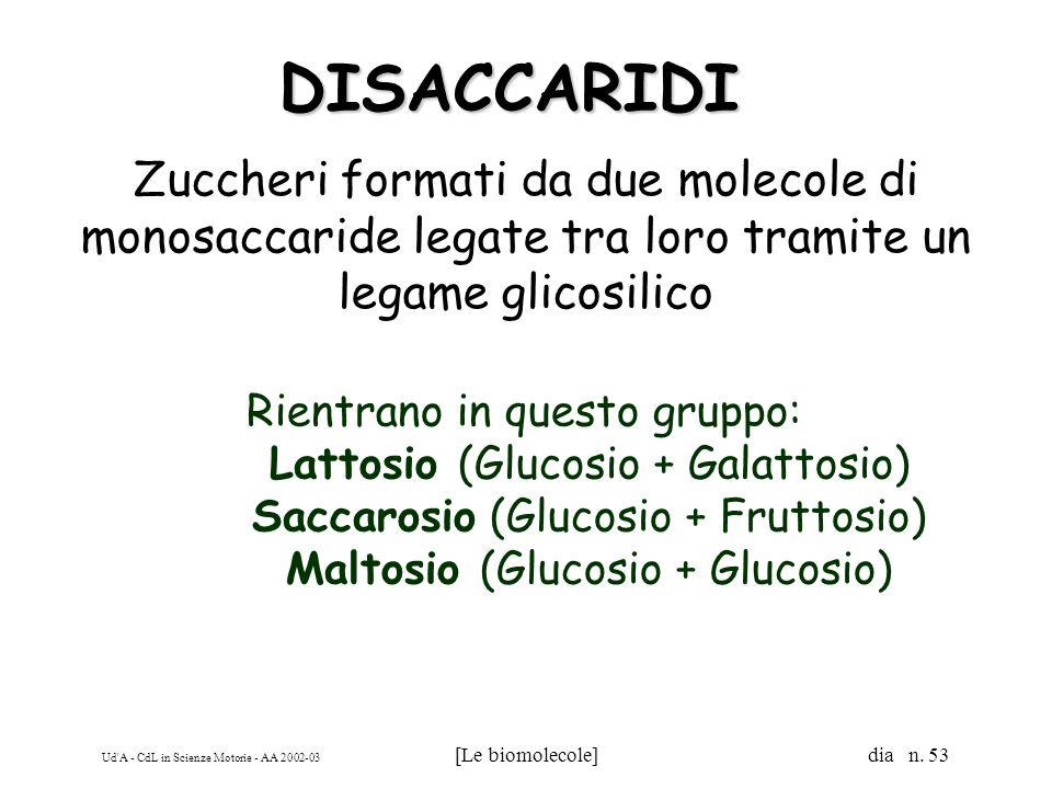 DISACCARIDI Zuccheri formati da due molecole di monosaccaride legate tra loro tramite un legame glicosilico.