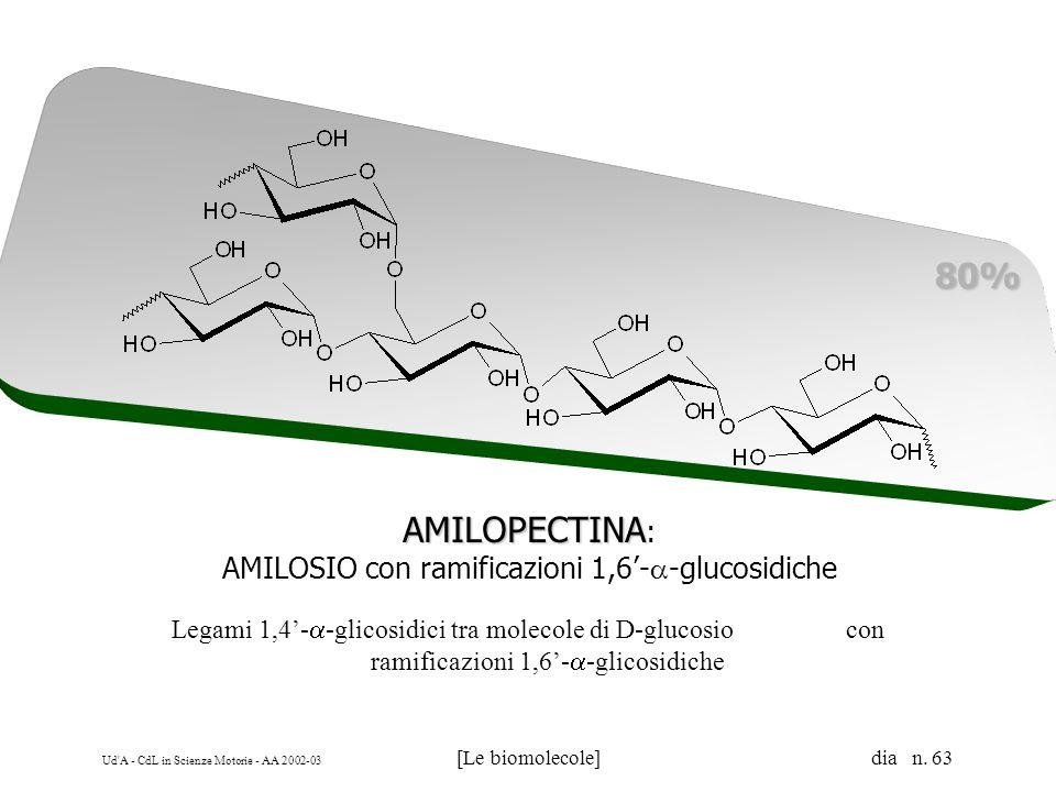 AMILOSIO con ramificazioni 1,6'-a-glucosidiche