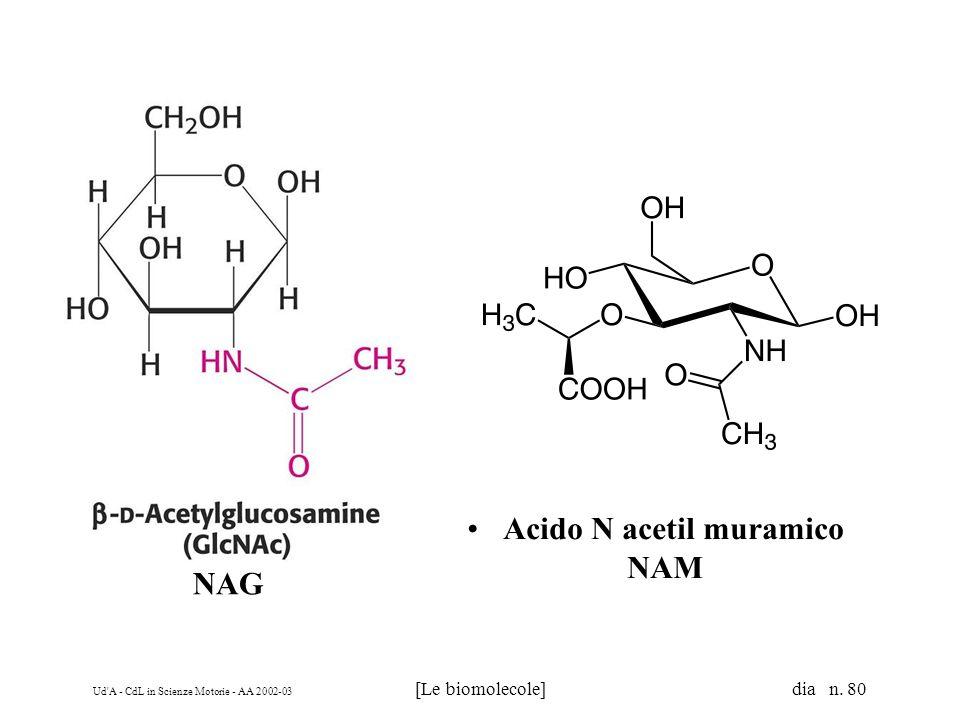 Acido N acetil muramico