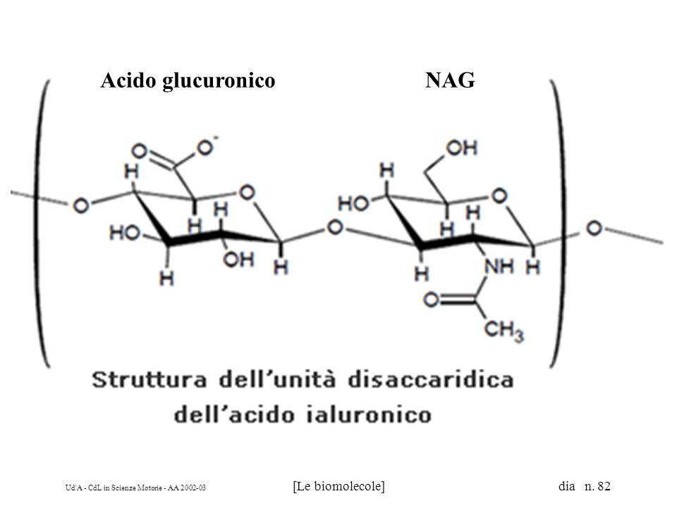 Acido glucuronico NAG