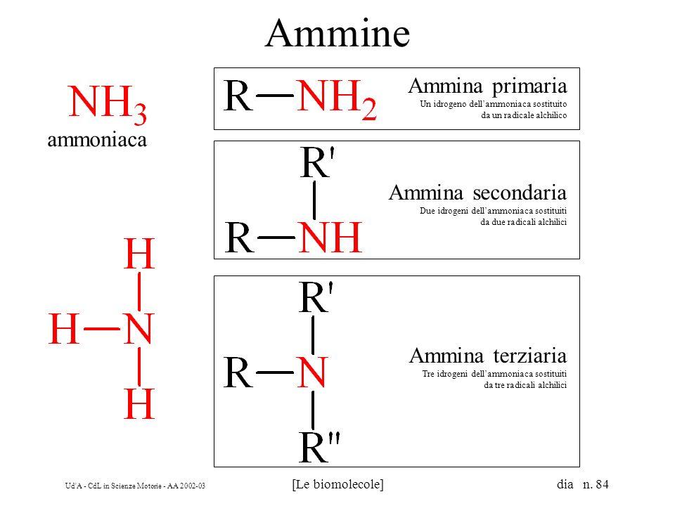 Ammine Ammina primaria ammoniaca Ammina secondaria Ammina terziaria