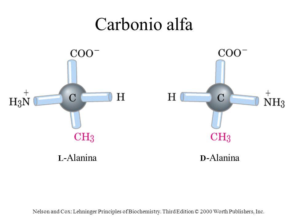 Carbonio alfa L-Alanina D-Alanina