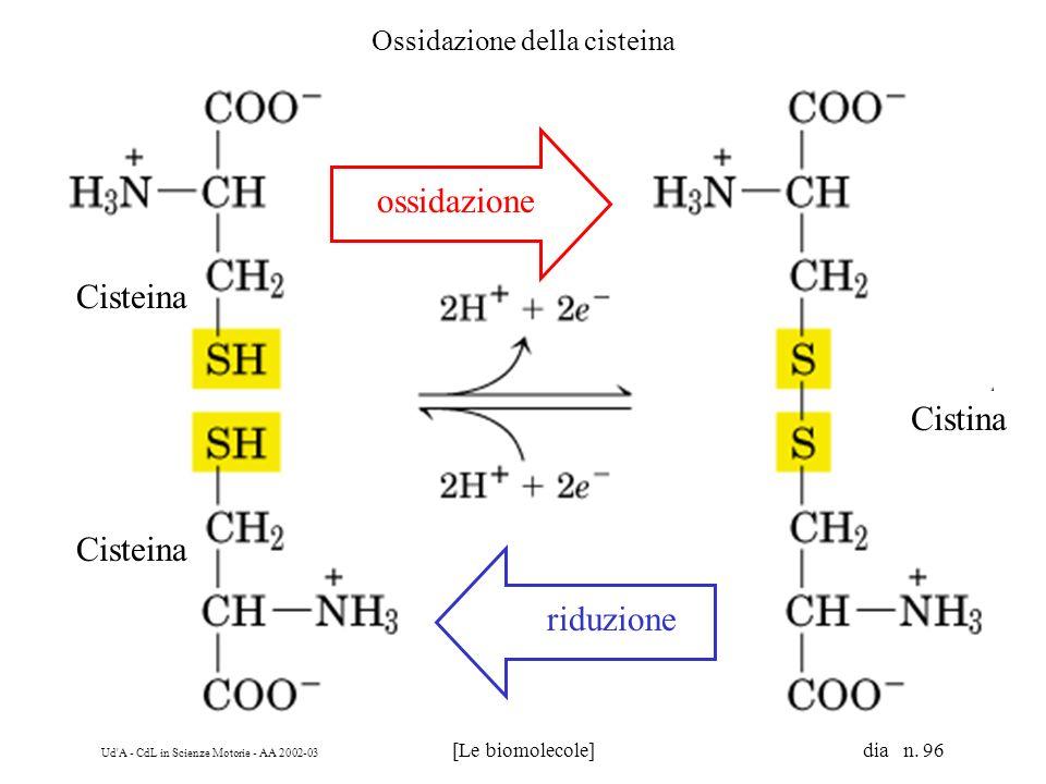 Ossidazione della cisteina