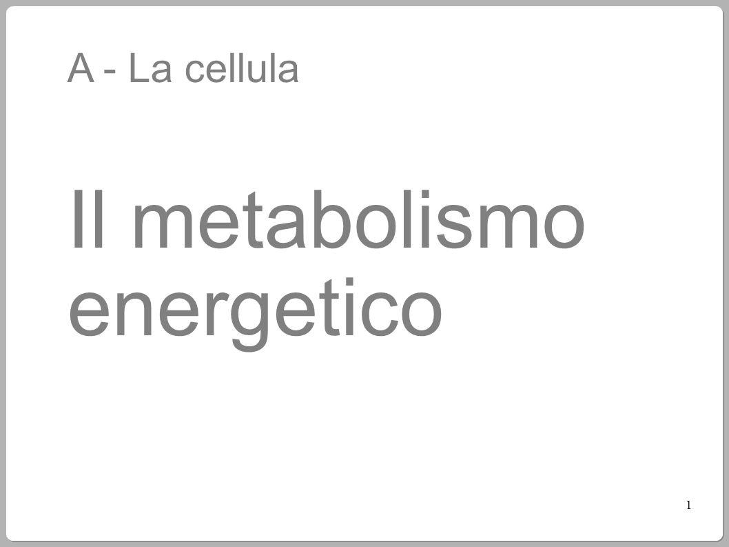 Il metabolismo energetico
