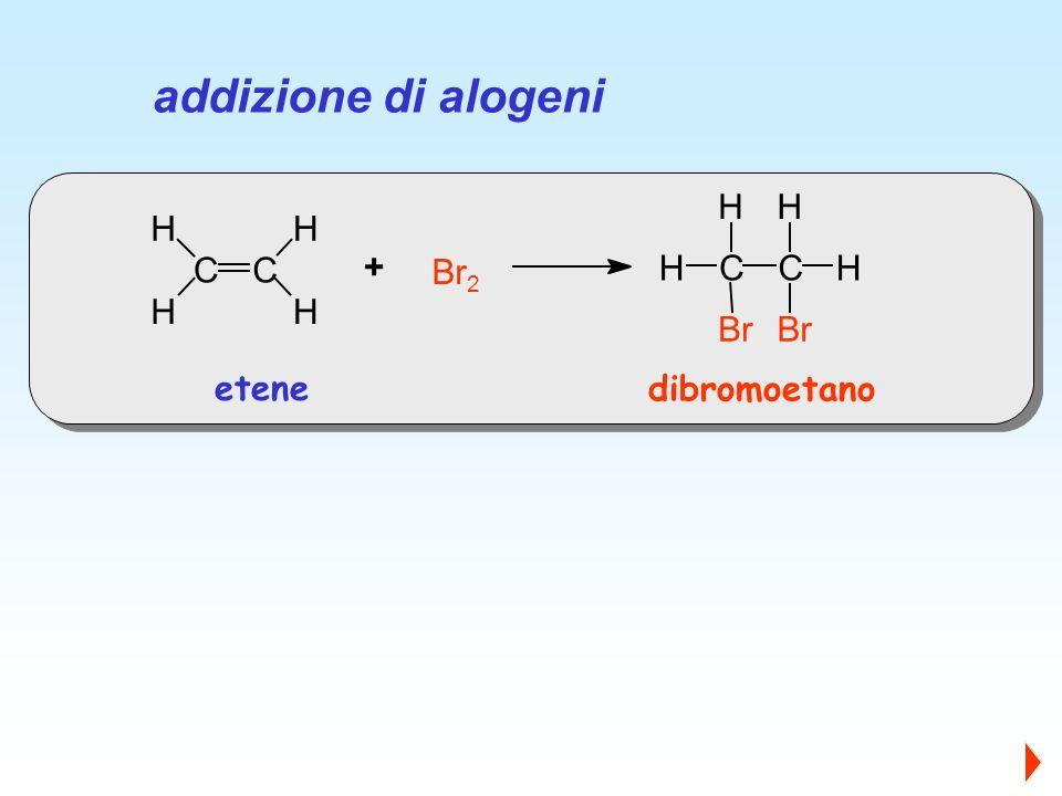 addizione di alogeni C H Br2 Br + etene dibromoetano