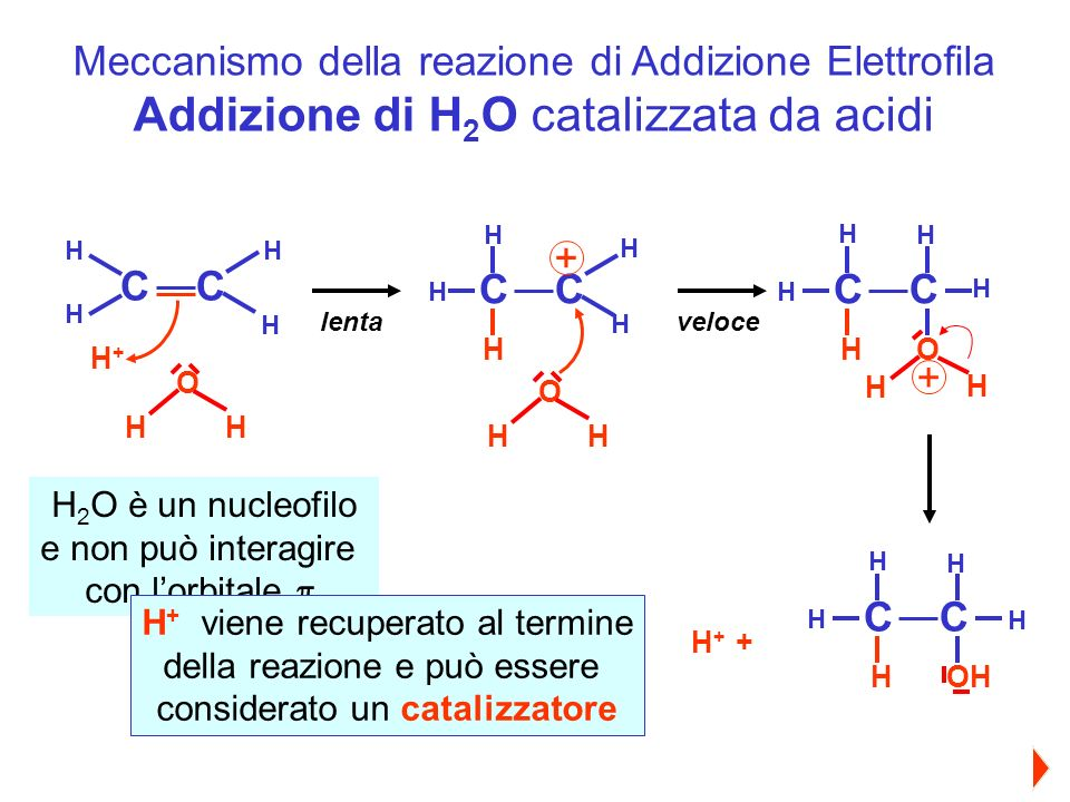 Addizione di H2O catalizzata da acidi