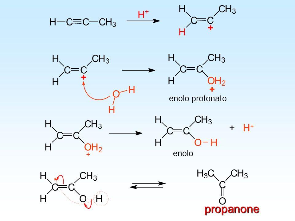 propanone C H C H O C H O + H+ C H O C H O + enolo protonato enolo + 3
