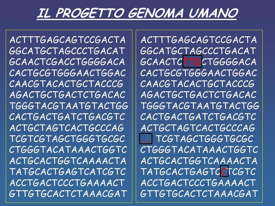 IL PROGETTO GENOMA UMANO