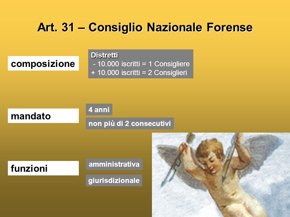 Art. 31 – Consiglio Nazionale Forense