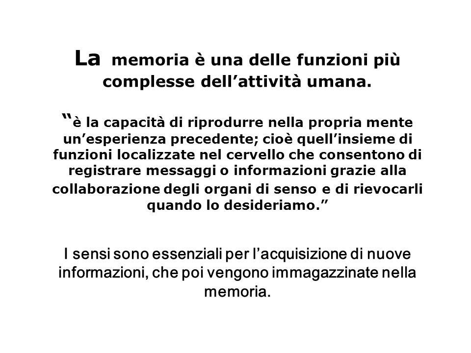 La memoria è una delle funzioni più complesse dell'attività umana