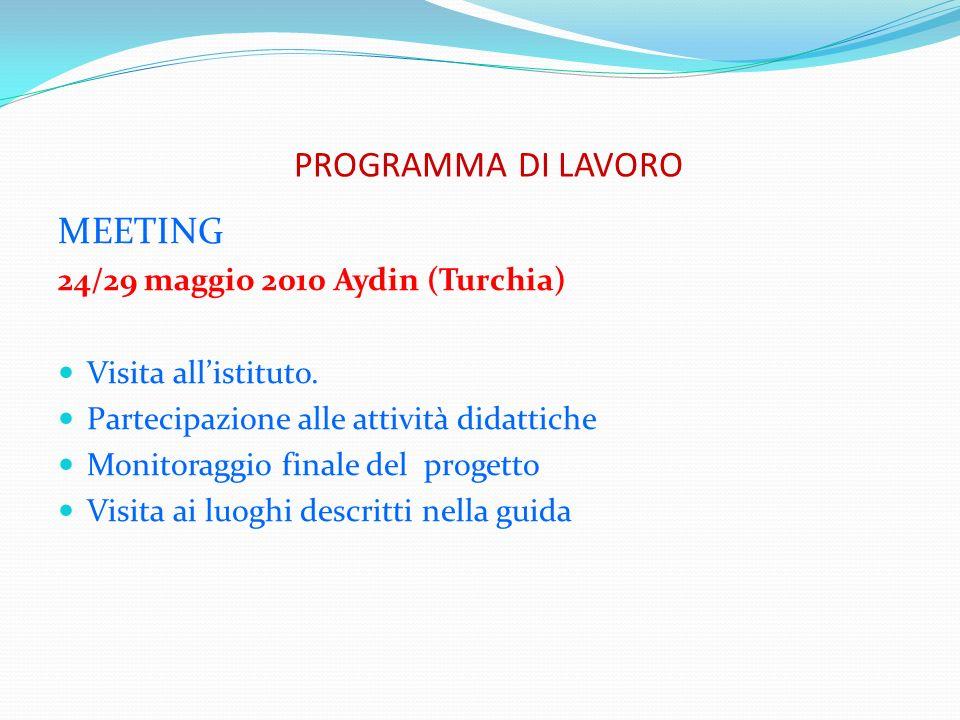 PROGRAMMA DI LAVORO MEETING 24/29 maggio 2010 Aydin (Turchia)