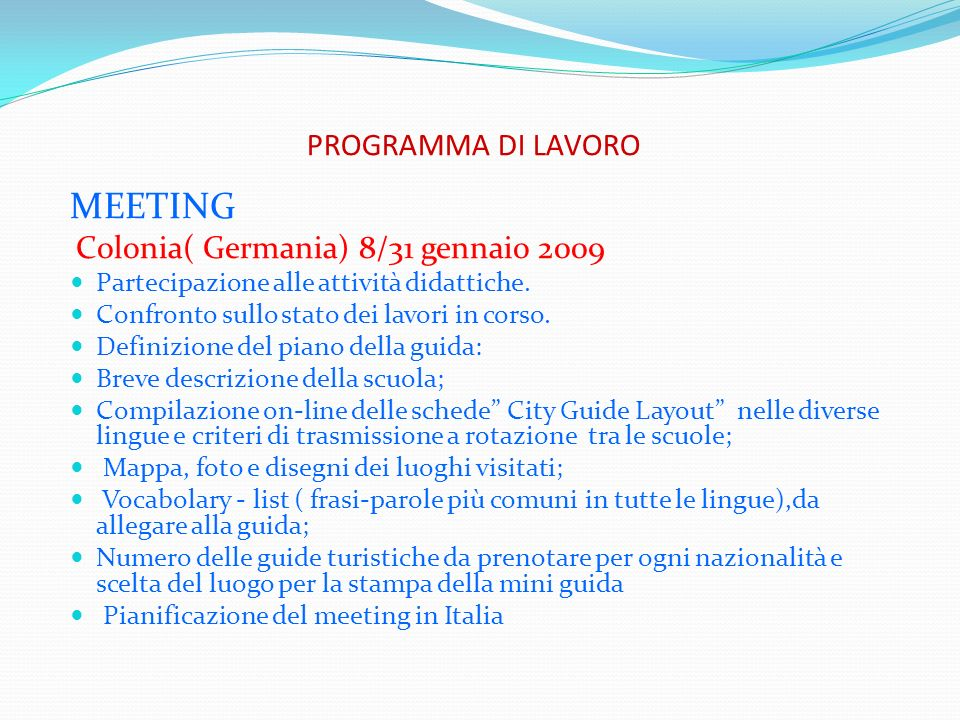 MEETING PROGRAMMA DI LAVORO Partecipazione alle attività didattiche.