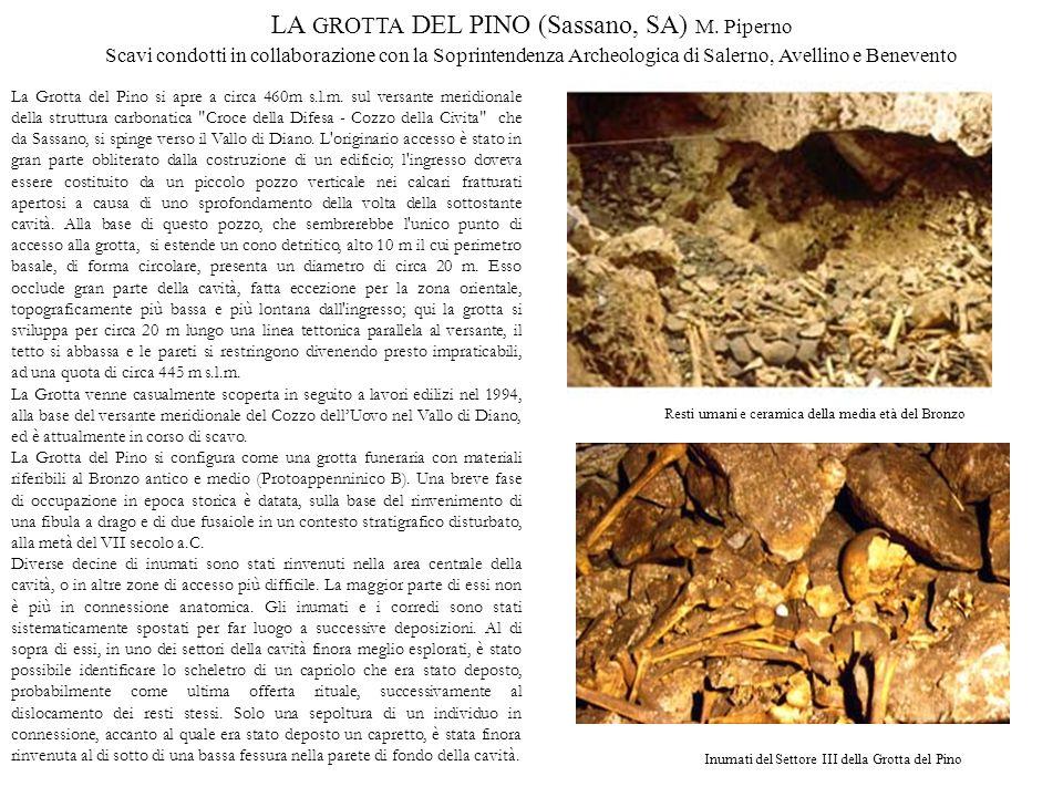 LA GROTTA DEL PINO (Sassano, SA) M. Piperno
