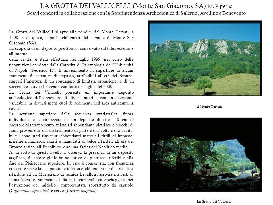 LA GROTTA DEI VALLICELLI (Monte San Giacomo, SA) M. Piperno