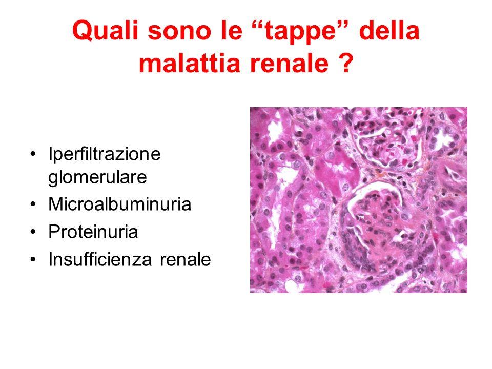Quali sono le tappe della malattia renale