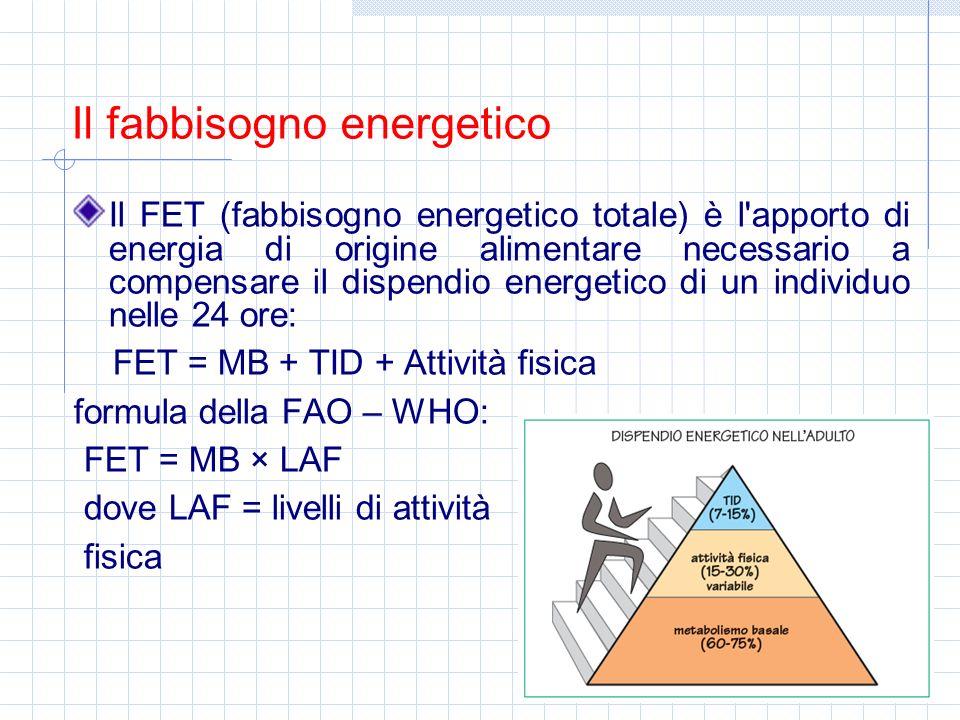 FET = MB + TID + Attività fisica formula della FAO – WHO: