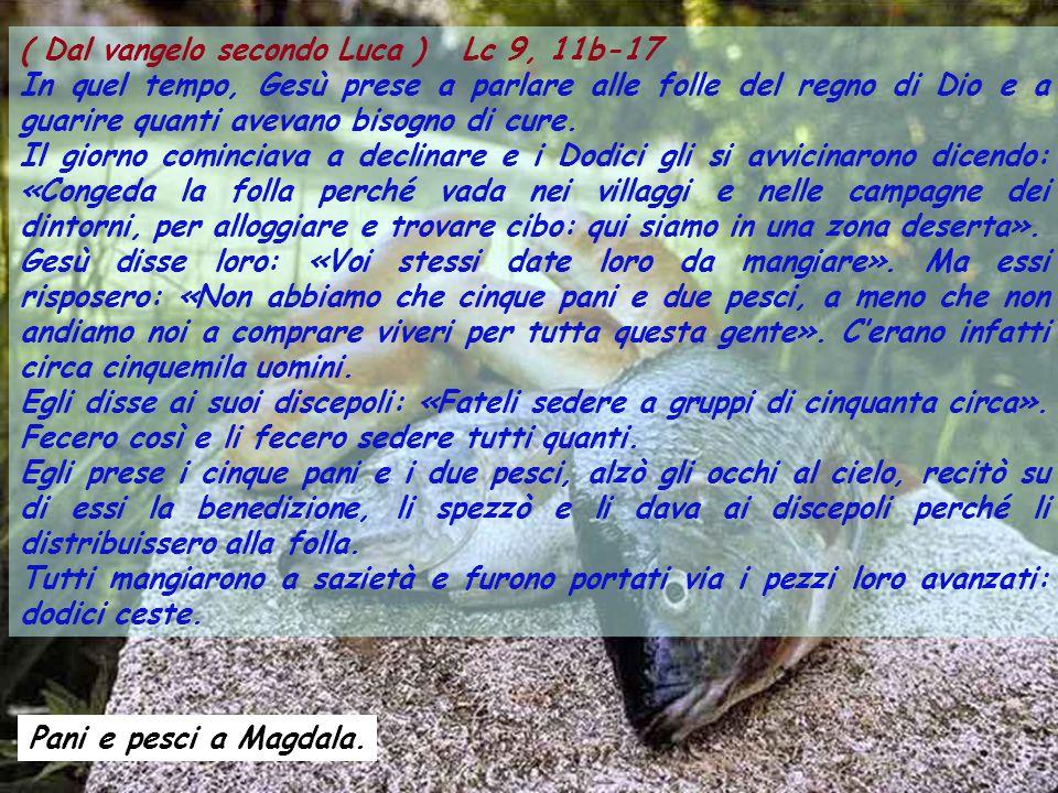 ( Dal vangelo secondo Luca ) Lc 9, 11b-17