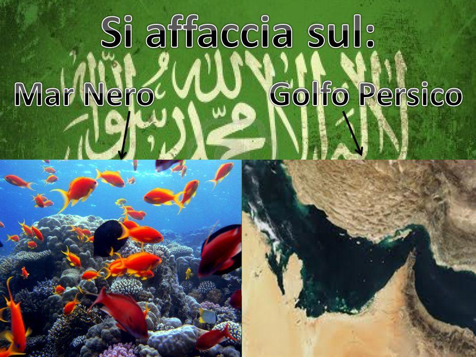 Si affaccia sul: Mar Nero Golfo Persico