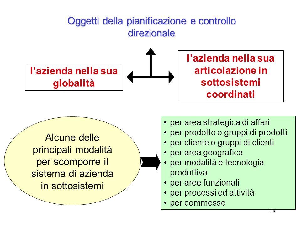 Oggetti della pianificazione e controllo direzionale