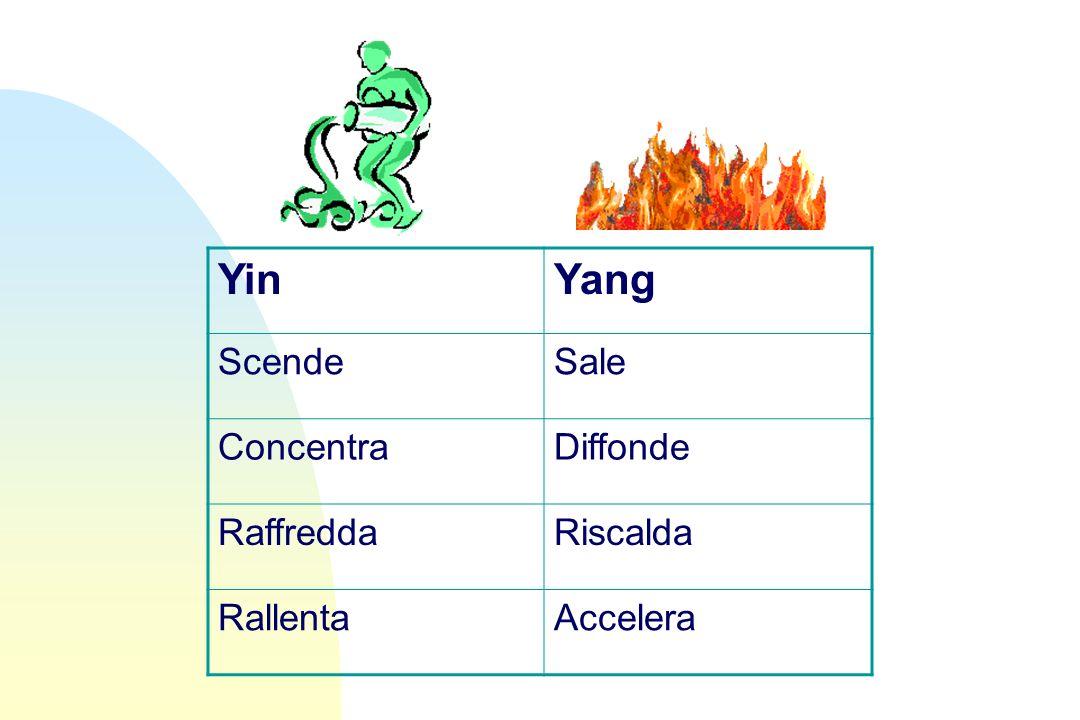 Yin Yang Scende Sale Concentra Diffonde Raffredda Riscalda Rallenta