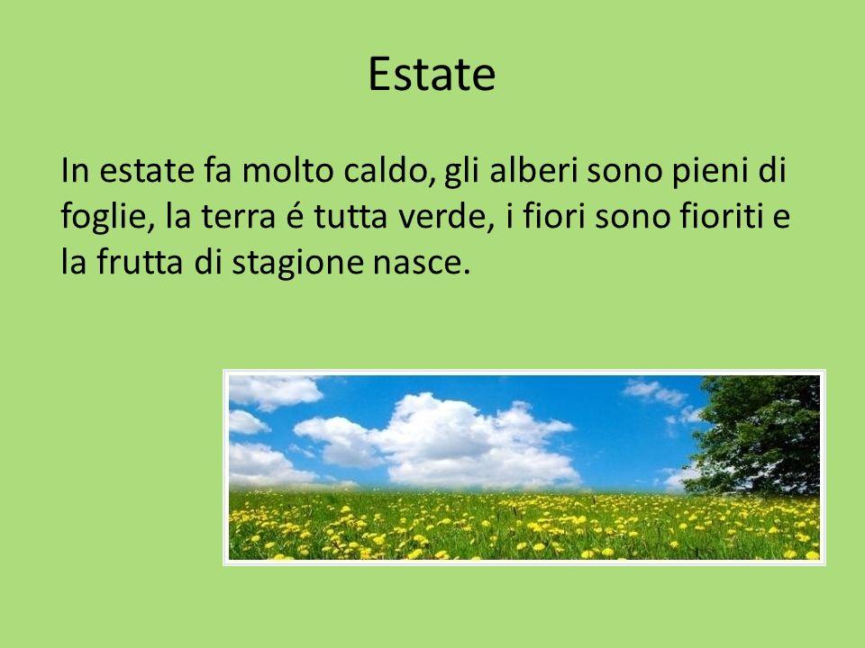 Estate In estate fa molto caldo, gli alberi sono pieni di foglie, la terra é tutta verde, i fiori sono fioriti e la frutta di stagione nasce.