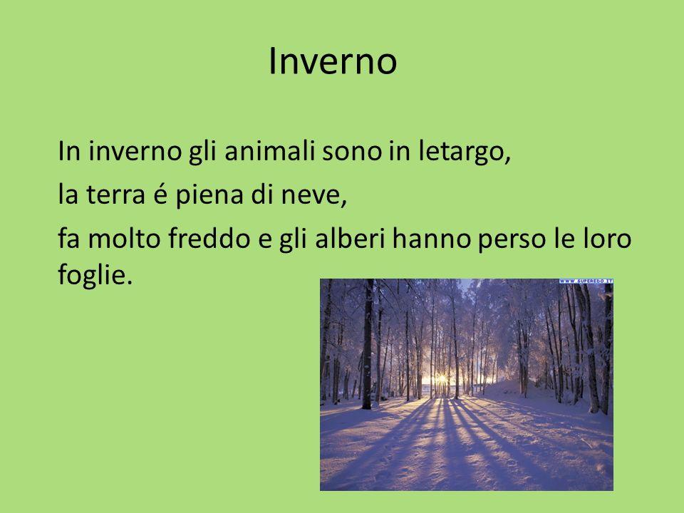 Inverno In inverno gli animali sono in letargo, la terra é piena di neve, fa molto freddo e gli alberi hanno perso le loro foglie.