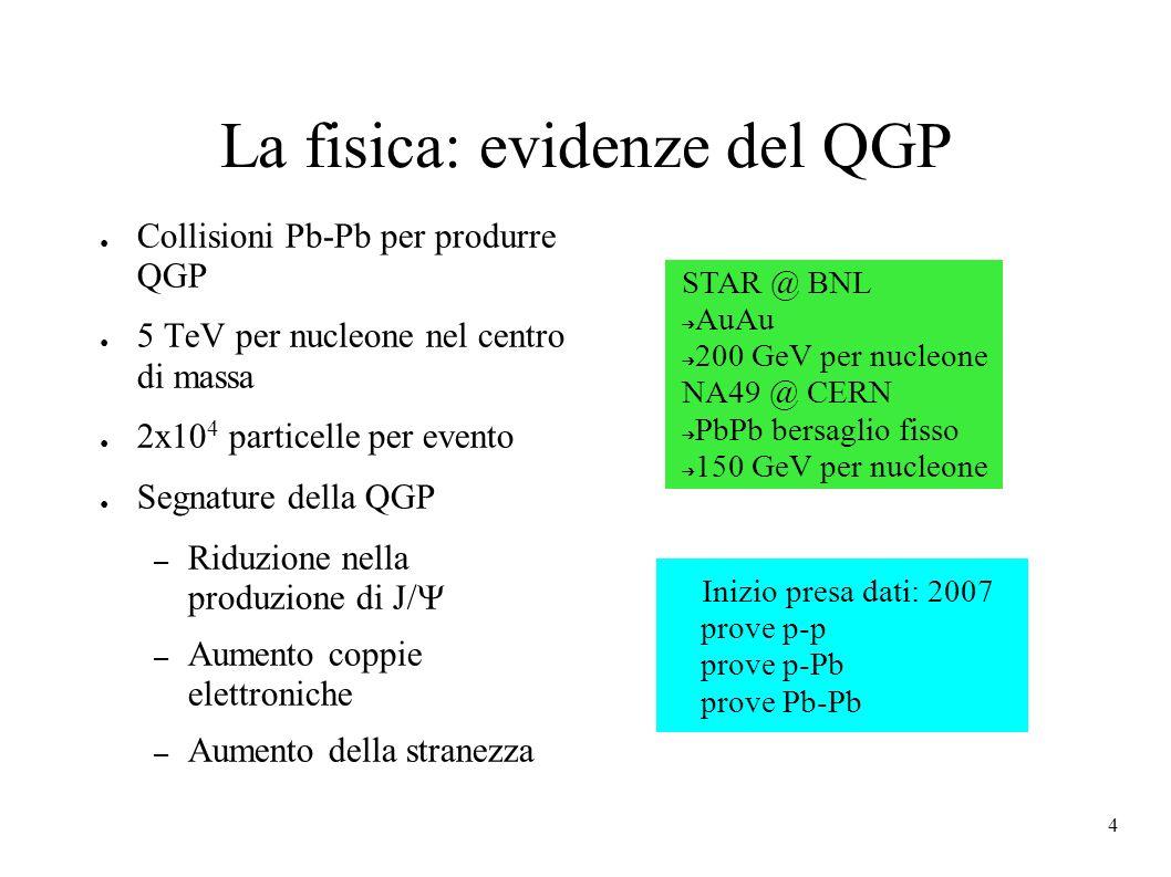 La fisica: evidenze del QGP