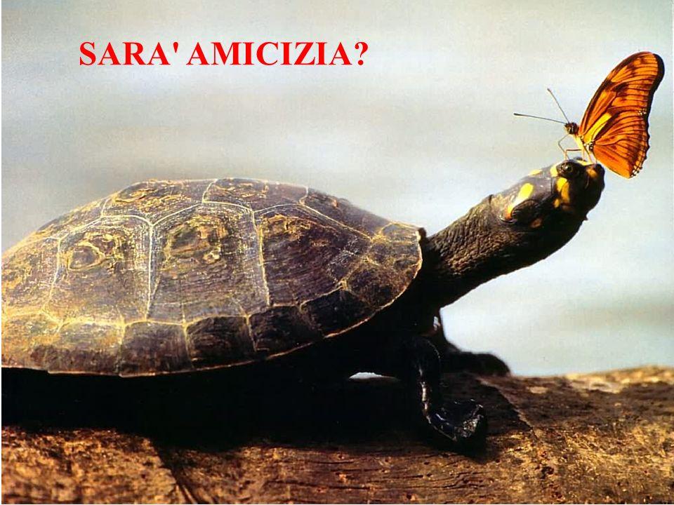 SARA AMICIZIA