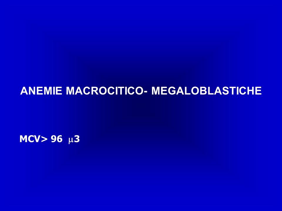 ANEMIE MACROCITICO- MEGALOBLASTICHE