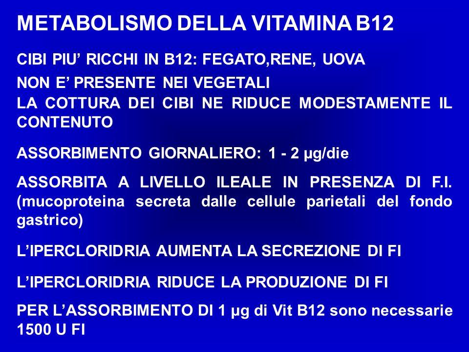 METABOLISMO DELLA VITAMINA B12