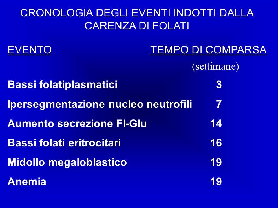 CRONOLOGIA DEGLI EVENTI INDOTTI DALLA CARENZA DI FOLATI