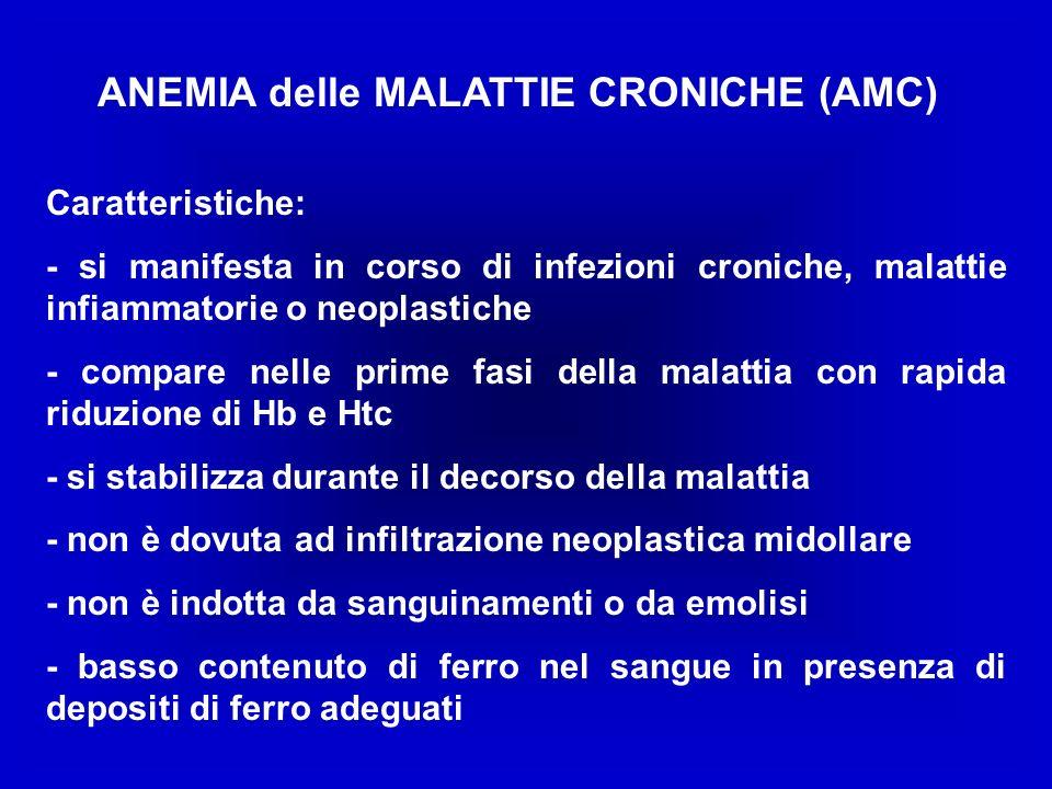 ANEMIA delle MALATTIE CRONICHE (AMC)