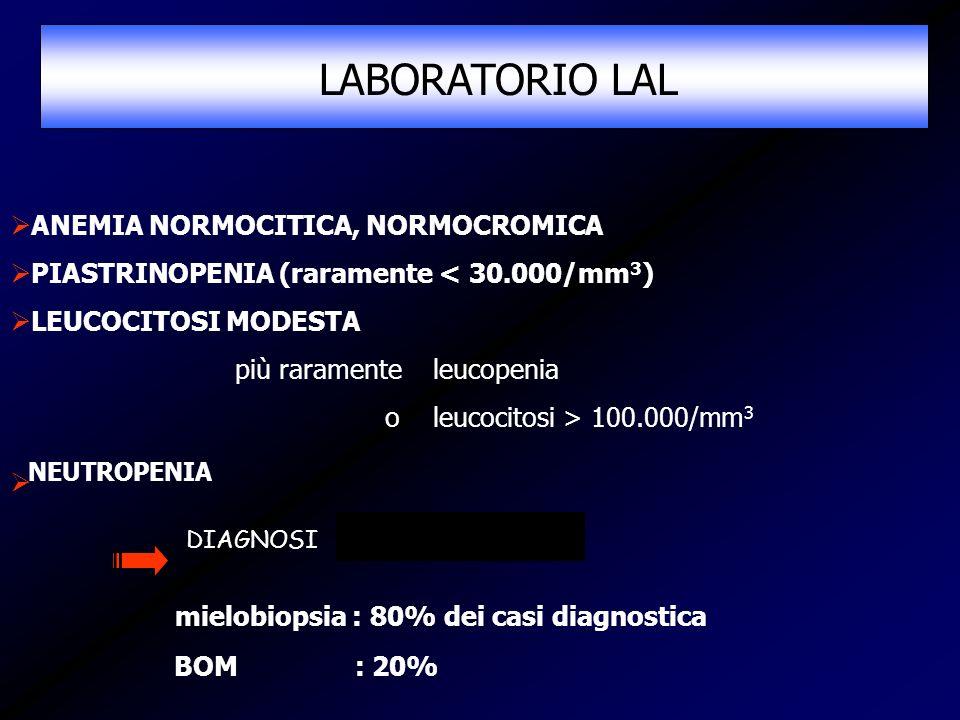 LABORATORIO LAL mielobiopsia : 80% dei casi diagnostica
