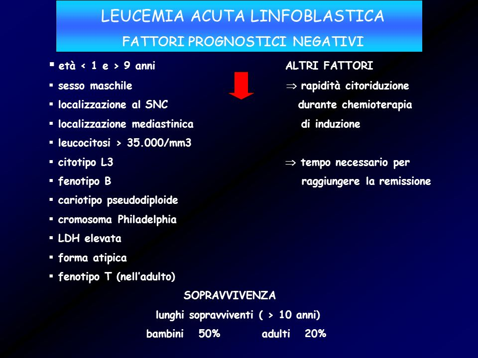 LEUCEMIA ACUTA LINFOBLASTICA