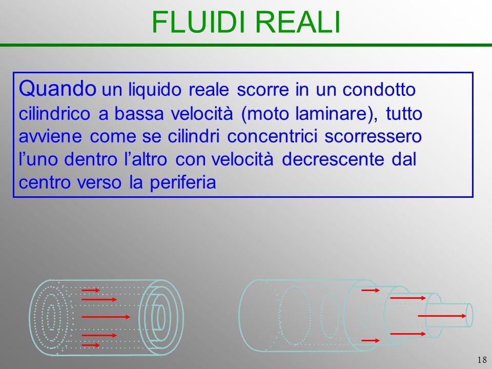 FLUIDI REALI