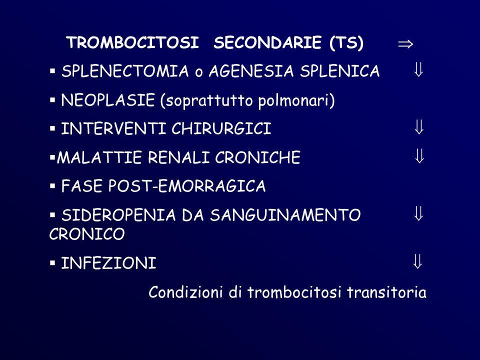 TROMBOCITOSI SECONDARIE (TS) 