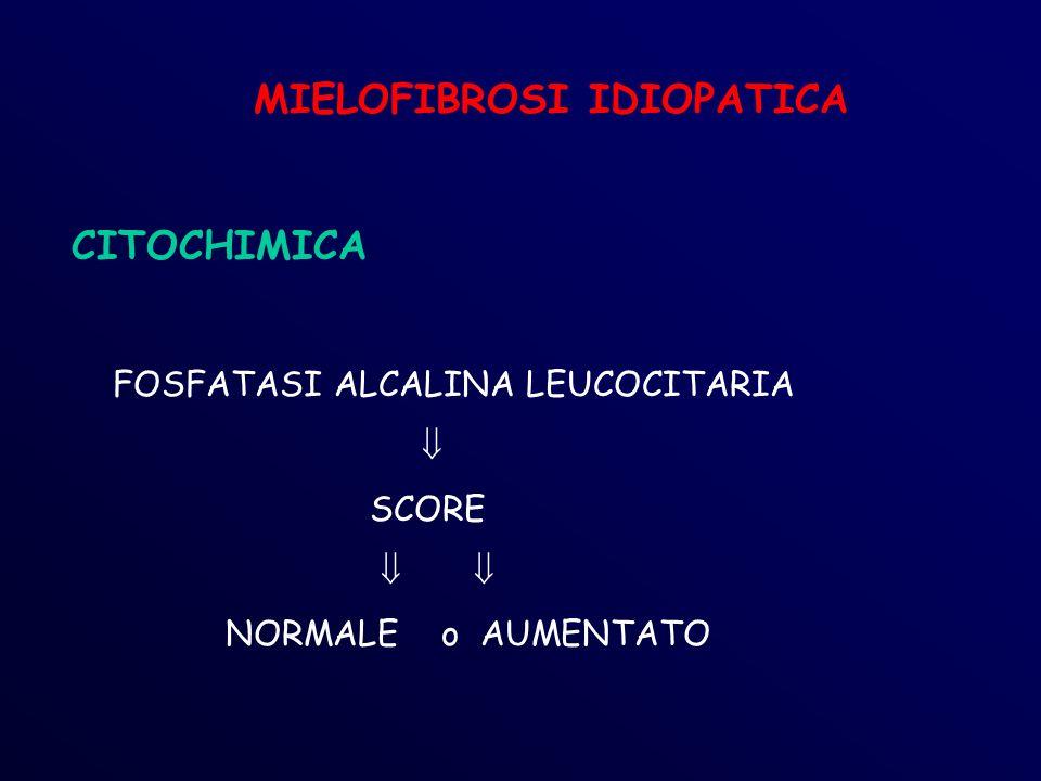 MIELOFIBROSI IDIOPATICA